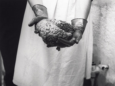 black and white, body, brain, cadaver, creepy