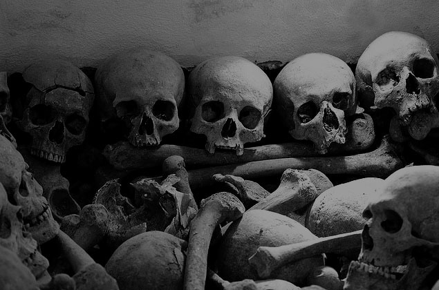 black and white, bones, skull, skulls