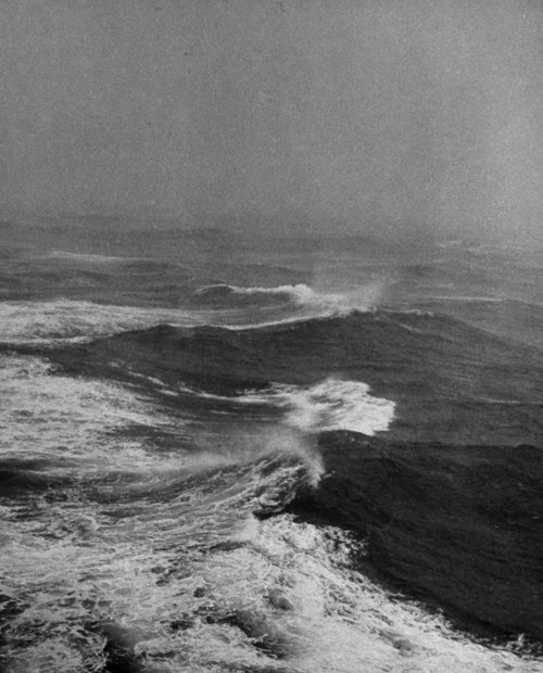 black and white, ocean, wild, wild ocean - image #255278 ...