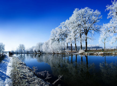 blue, people, photography, sky, snow, trees, water, winter