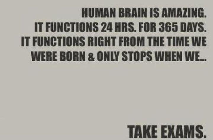 brain, exam, lol