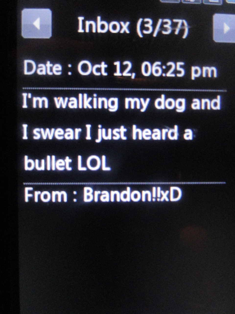 brandon, funny, retarded, stupid, text
