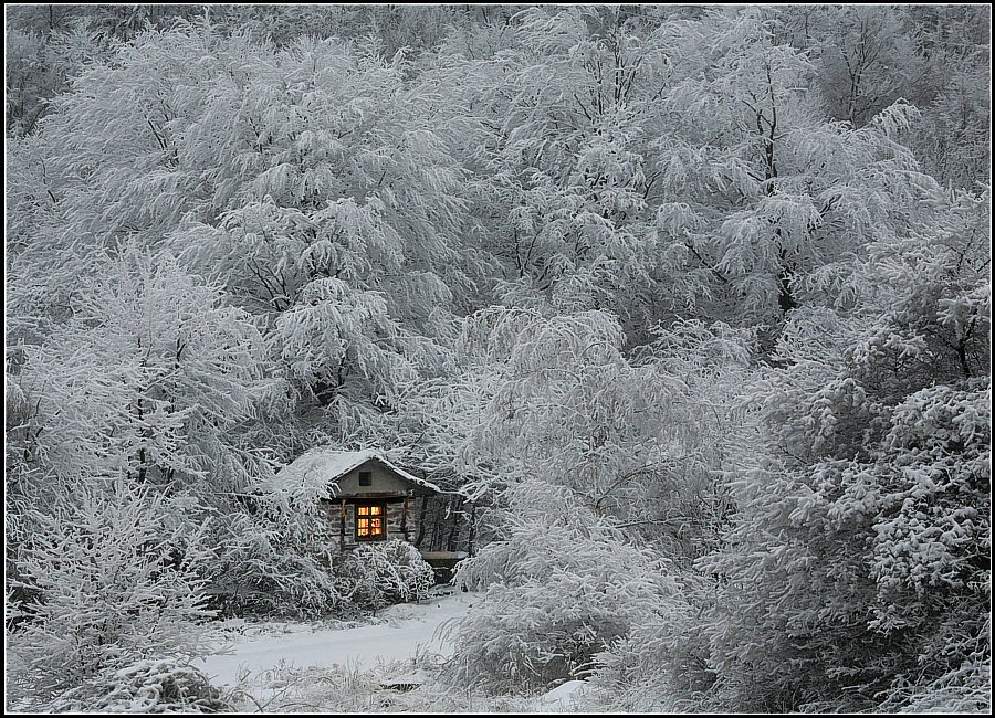 cabin, christmas, cold, cold weather, cosy