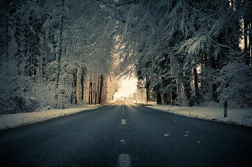 christmas, cold, road, snow, winter