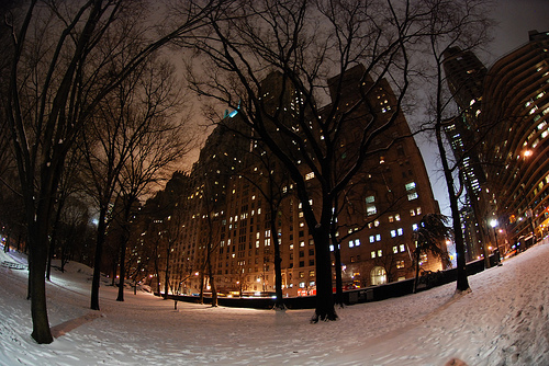 city, fish eye, photography, snow, trees, upload