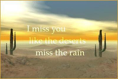 cute, desert, deserts miss the rain, i miss you, rain, text, true