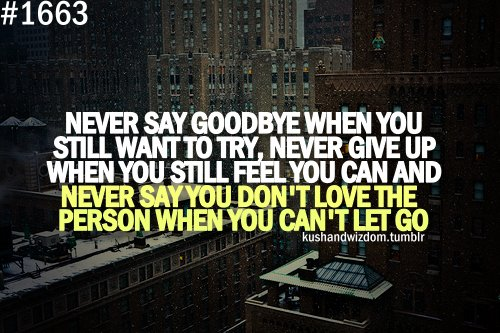 feel, give up, goodbye, let go, love, never, never give up, never say never, quote, quotes, say, still, still feel, try