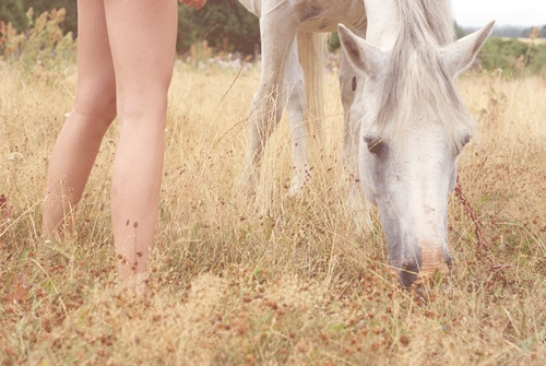 friends, girl, horse, pony, pretty