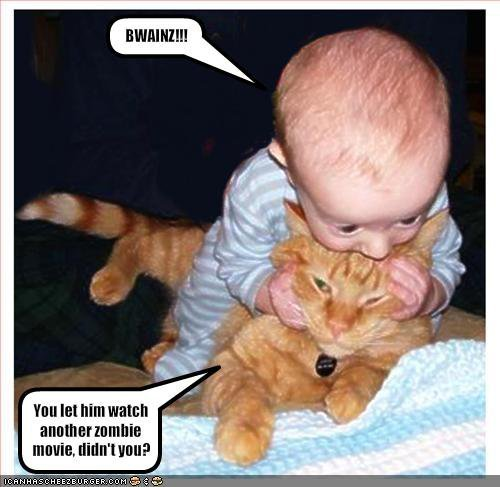 aaaawww, baby, cat, eat, funny, how cute, nom, quote