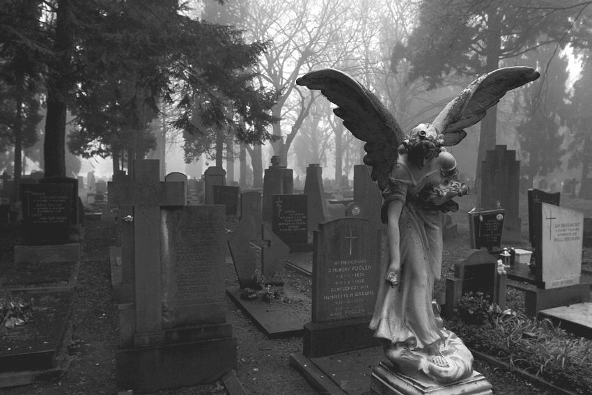angel, cemetery, cross, fog, gothic