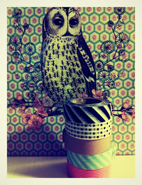 art, bag, bird, illustration, owl