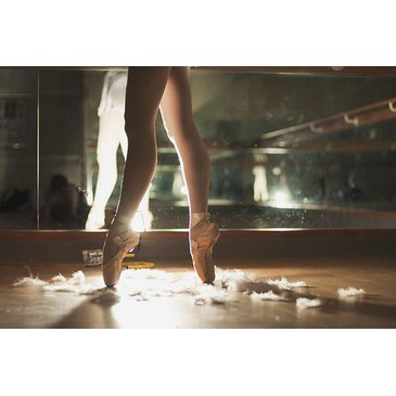 ballet, dance, danser, feather, feathers, legs