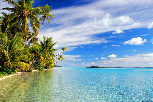 beach, island, ocean, palm trees, paradise