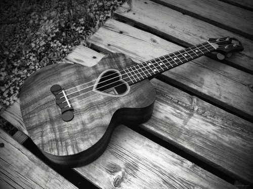 beautiful, black and white, cute, guitar, love, music, nice, ukulele
