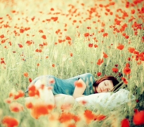 beautiful, blond, blonde, cute, fashion, flower, girl, hair, love, model, perfect, photography, pretty, sleep, smile, sunshine, sweet