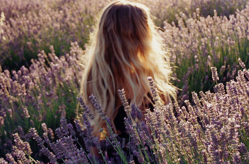 beautiful, blonde, field, flowers, girl