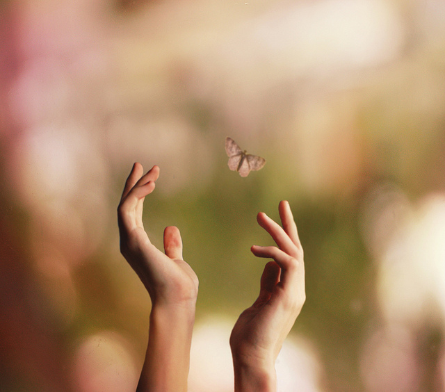 http://s2.favim.com/orig/33/beautiful-butterfly-free-hands-januarymidnight-Favim.com-268070.jpg#Beautiful%20butterflies%20in%20hands%20gif