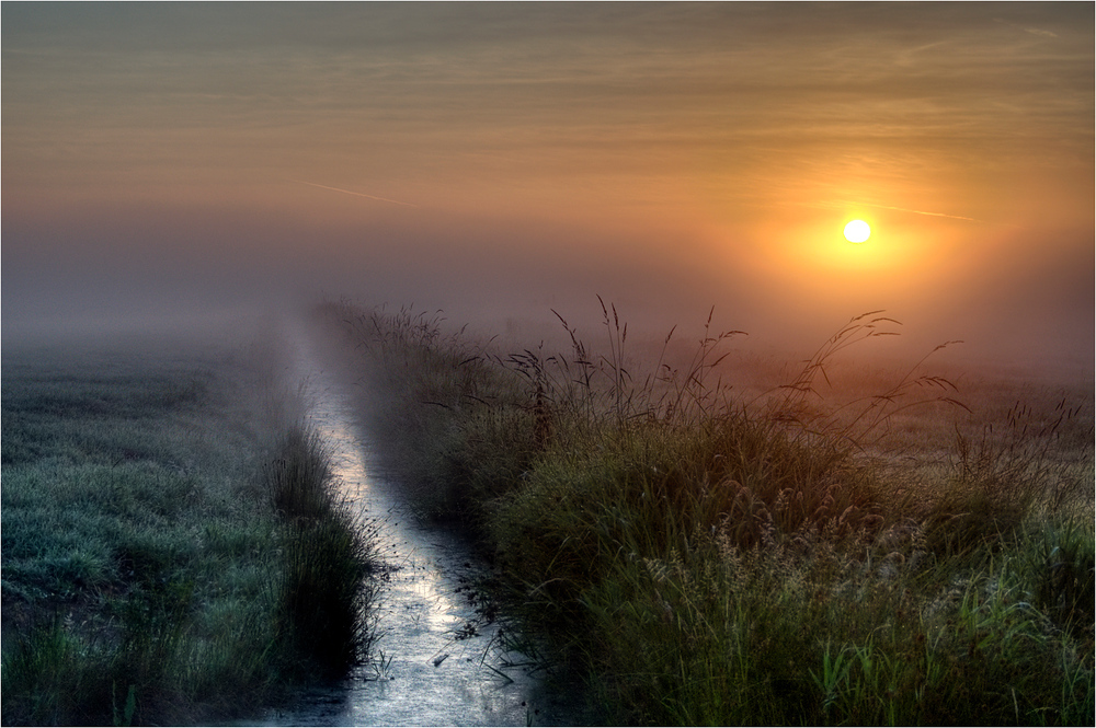 beautiful, creek, endless, fog, landscape