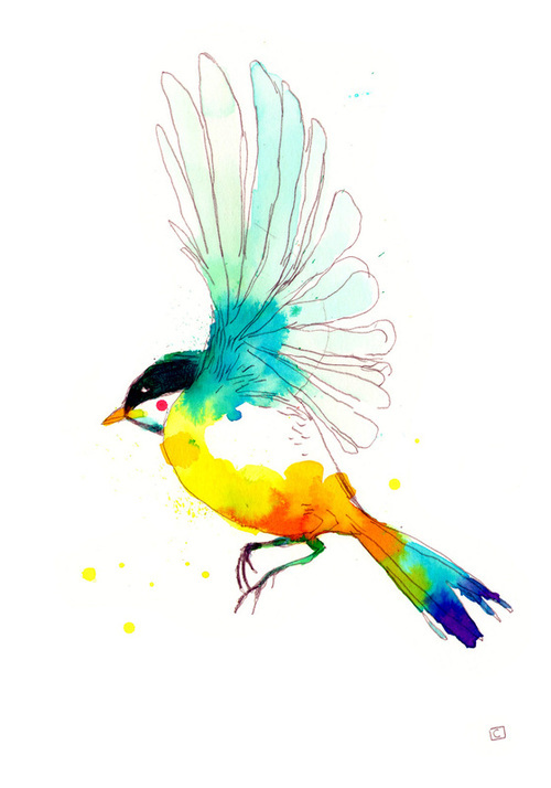 bird, colour, drawing, paint, pretty - image #269239 on ...