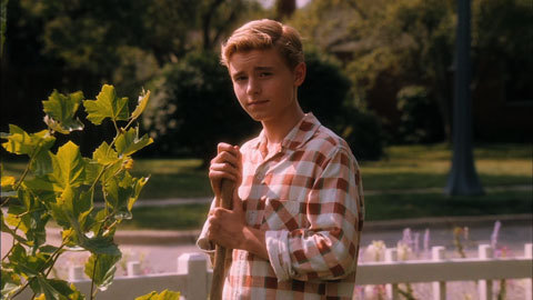 boy, callan mcauliffe, cute, first love, flipped