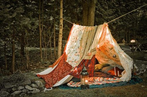 camp, cool, cosy, forest, light