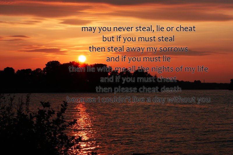 cheat, leap year, lie, love, quote - image #263044 on Favim.com