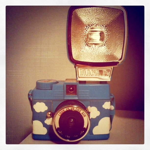 dianaf+, lomo, love is in the air, mini diana, photography