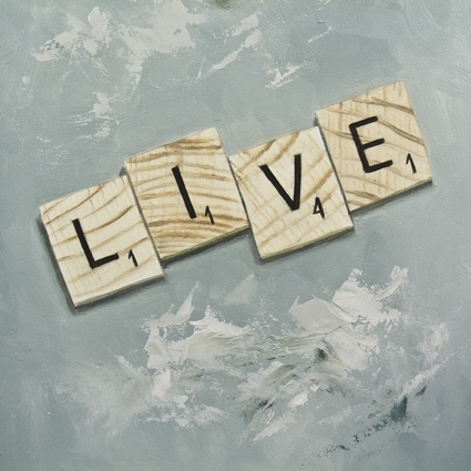 enjoy, life, live, photography