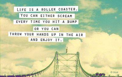 enjoy, life, quote, roller coaster, scream