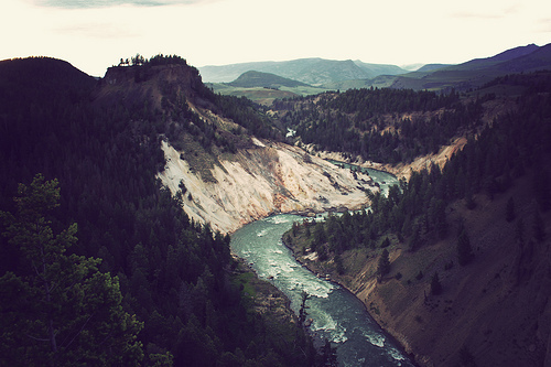 forest, hills, mountains, nature, river, trees, water, waves