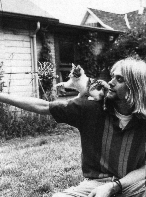 1990s, 90s, cat, cute, kurt cobain, music, nirvana, vintage