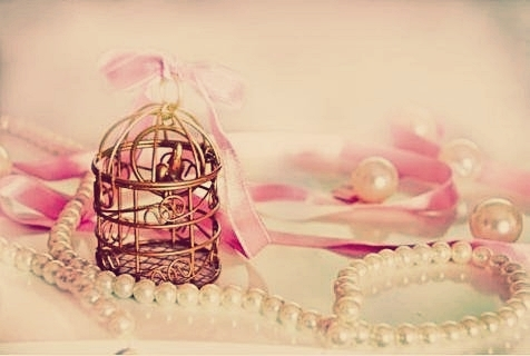 accessories, adorable, beautiful, bow, cage