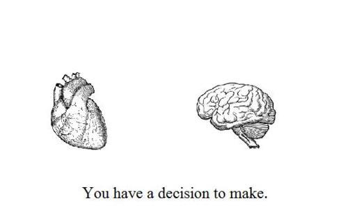 accurate, amazing, art, brain, decision, go brain!, head or heart, heart, life, love, quote, text, this, words