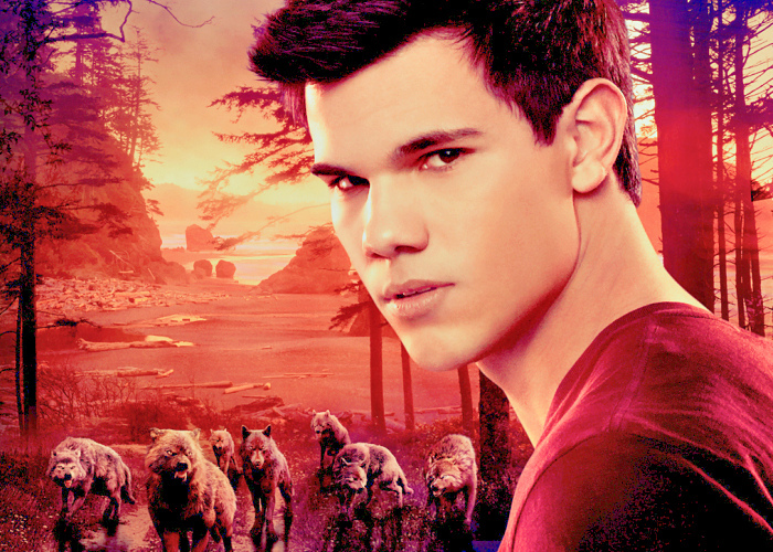 amanhecer, jacob black , taylor lautner, twilight, wolves
