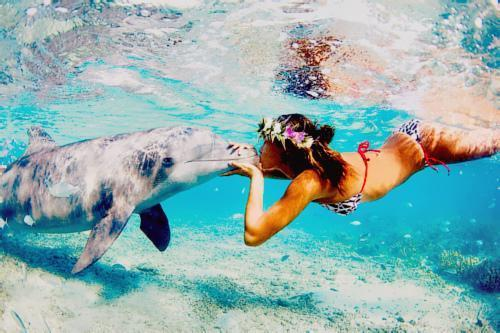 amazing, beach, bikini, cool, cute, dolphin, flower, girl, hair, ocean, sea, tan, water