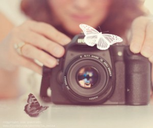 art, artistic, beautiful, butterfly, camera