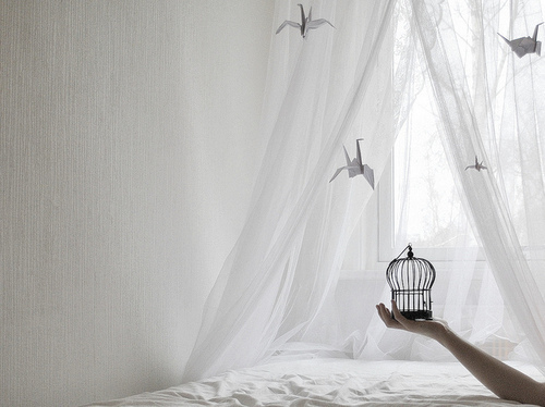 art, beautiful, bedroom, bird, birds, cage, curtains, flowy, inspiational, origami, photography, scenery, white