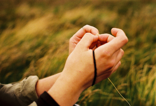 autumn, beautiful, grass, hands, hipster