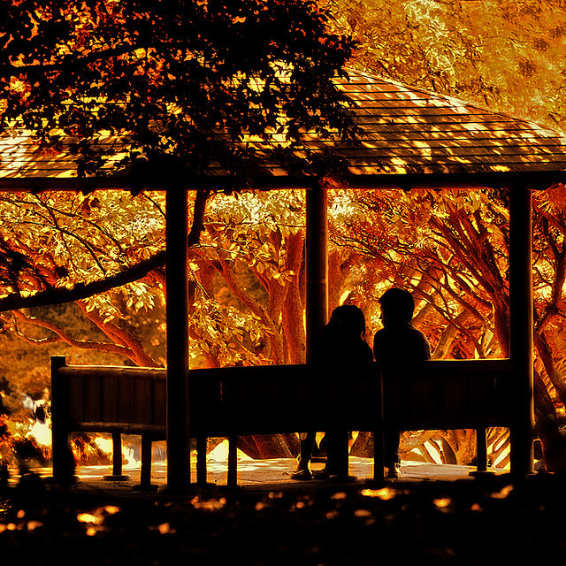 autumn, bench, boyfriend, colors, contour