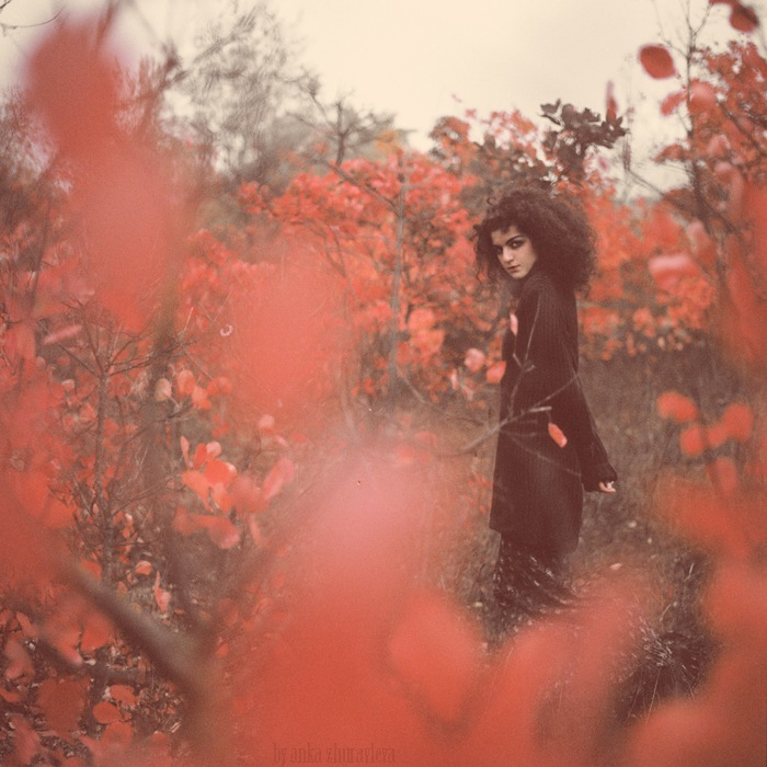 autumn, berries, black, curly hair, indie