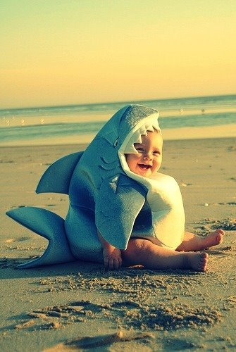 baby, beach, happy, life, shark