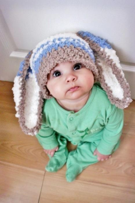 baby, bunny, cute, little, sweet