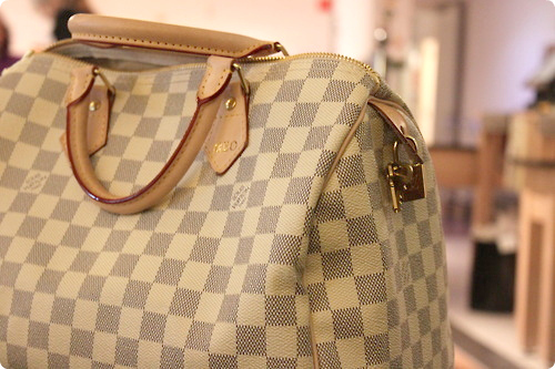 bag, bnag, handbag, louis vuitton, pag