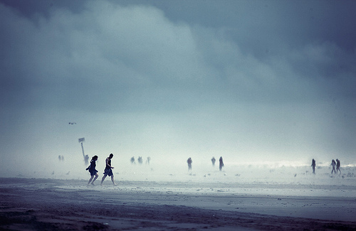 beach, beautiful, fog, grey, mist