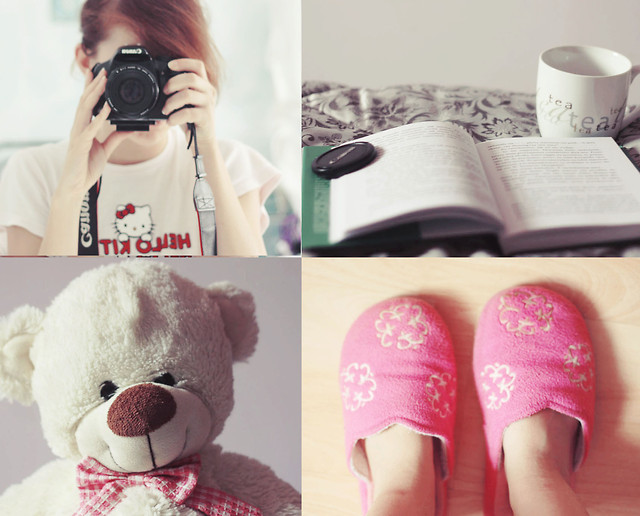 bear, beautiful, book, breakfast, camera