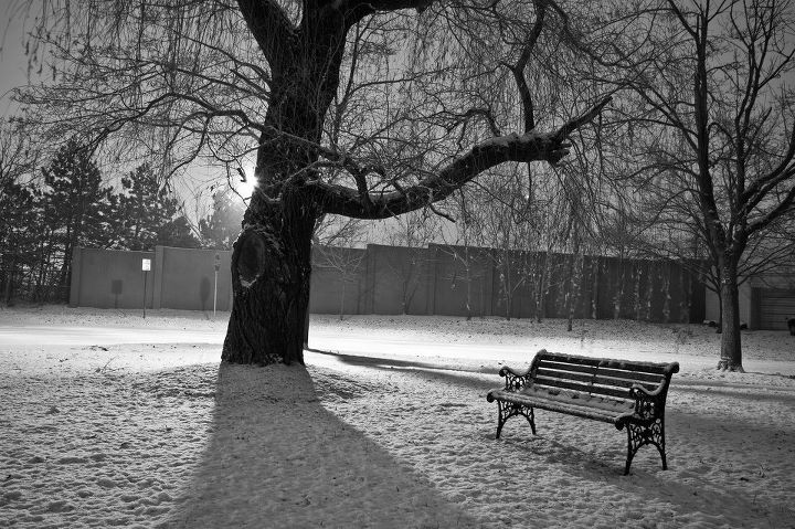beautiful, bench, nature, photography, snow