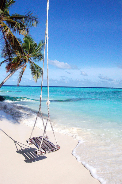 beautiful, blue, clear, nature, ocean, relax, sea, sky, swing, tree, water