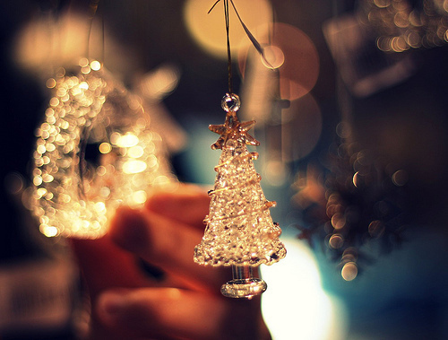 beautiful, brilliant, cool, cute, fantastic, great, hand, holiday, nature, new year, photography, pretty, silver, tree