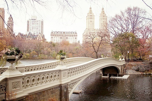 beautiful, central park, city, cute, new york