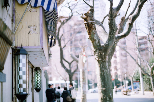 beautiful, city, hipster, house, indie, people, photo, photography, streee, summer, tree, white, winter